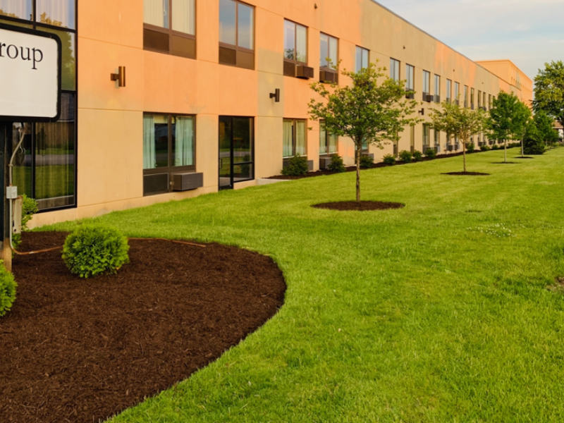 Commercial mulching service - brown color mulch