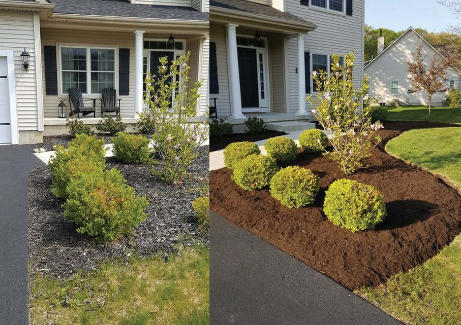 Before and after mulching and spring clean up