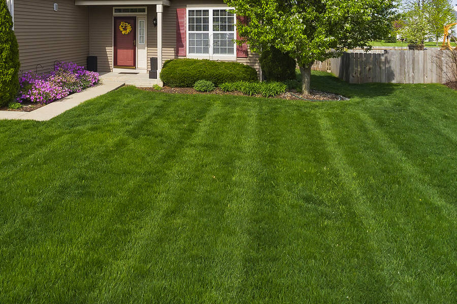 Mowing service in. Plainfield, Illinois 60586